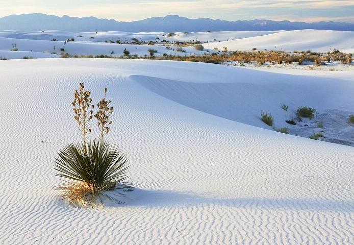 White_Sands_Desert-13